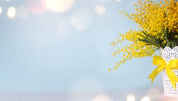 mimosa festa donna - STUDIO MEDICO Gli Archi